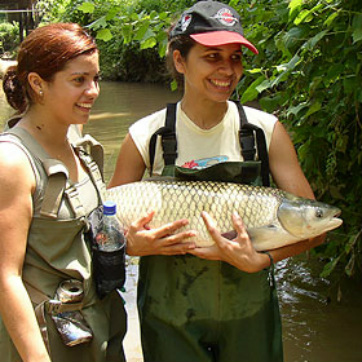 wildlife biologists - Wildlife Biologist Job Description